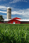 Farm near Beauharnois, Quebec, Canada