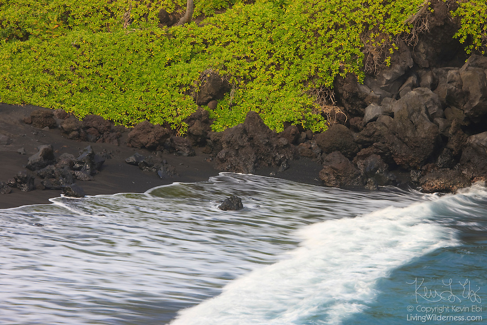 Pacific Ocean waves crash into the Honokalani Black Sand Beach, located in Wainapanapa State Park, Hana, Maui, Hawaii.