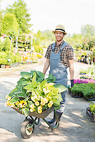 Full-length portrait of happy gardener pushing wheelbarrow with plants at garden