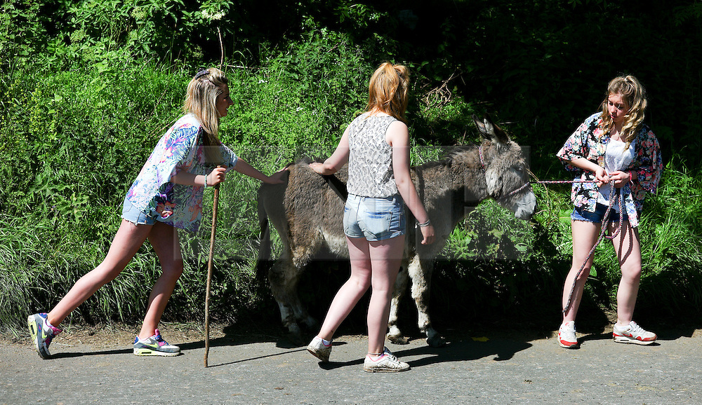 © Licensed to London News Pictures. <br /> 06/06/2014. <br /> <br /> Appleby, Cumbria, England<br /> <br /> Three girls walk a donkey along the road as gypsies and travellers gather during the annual horse fair on 6 June, 2014 in Appleby, Cumbria. The event remains one of the largest and oldest events in Europe and gives the opportunity for travelling communities to meet friends, celebrate their music, folklore and to buy and sell horses.<br /> <br /> The event has existed under the protection of a charter granted by King James II in 1685 and it remains the most important event in the gypsy and traveller calendar.<br /> <br /> Photo credit : Ian Forsyth/LNP