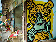 18 JULY 2017 - BANGKOK, THAILAND: A painting of a stylized tiger on a wall in an abandoned home on Soi 27 off of Sathu Pradit in Bangkok. The area  was a working class neighborhood of two storey shophouses. Most of the homes in the were occupied by Thais of Chinese heritage. The owner of the land sold the land to a developer who plans to build a condominium tower on the site. The residents left in early July and the shophouses will be torn down in coming weeks.       PHOTO BY JACK KURTZ