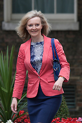 Downing Street, London July 15th 2014. New Environmental secretary Liz Truss arrives at 10 Downing Street