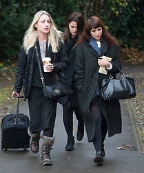 ©  London News Pictures. 27/11/2013. London, UK. Italian Sisters Elisabetta 'Lisa' (centre at back) and Francesca (right, with handbag) Grillo, who are the former personal assistants to Charles Saatchi and Nigella  Lawson, arriving at Isleworth Crown Court in London. The pair, who face fraud charges, are accused of misappropriating funds while working for Saatchi and Lawson. Photo credit : Ben Cawthra/LNP