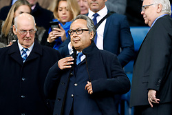 Everton co-owner Farhad Moshiri in the stands