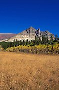 Tallgrass and fall color under Appikuni Peak, Many Glacier area, Glacier National Park, Montana