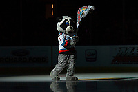 KELOWNA, BC - NOVEMBER 1: Rocky Raccoon, the mascot of the Kelowna Rockets, waves his flag on the ice at the start of the game against the Prince George Cougars  at Prospera Place on November 1, 2019 in Kelowna, Canada. (Photo by Marissa Baecker/Shoot the Breeze)