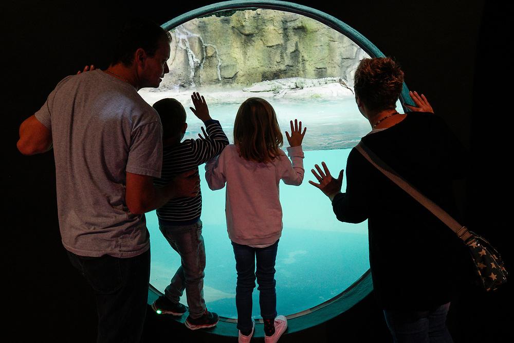 AQUATIS Aquarium-Vivarium Lausanne est un concept unique en Suisse et en Europe. Il met en sc&egrave;ne des animaux vivants gr&acirc;ce &agrave; une sc&eacute;nographie totalement immersive et interactive &agrave; l'aide de technologies num&eacute;rique innovantes. Il se postionne comme le plus grand Aquarium-Vivarium d'eau douce d'Europe.<br /> Lausanne OCTOBRE 2017<br /> &copy;Nicolas Righetti/Lundi13