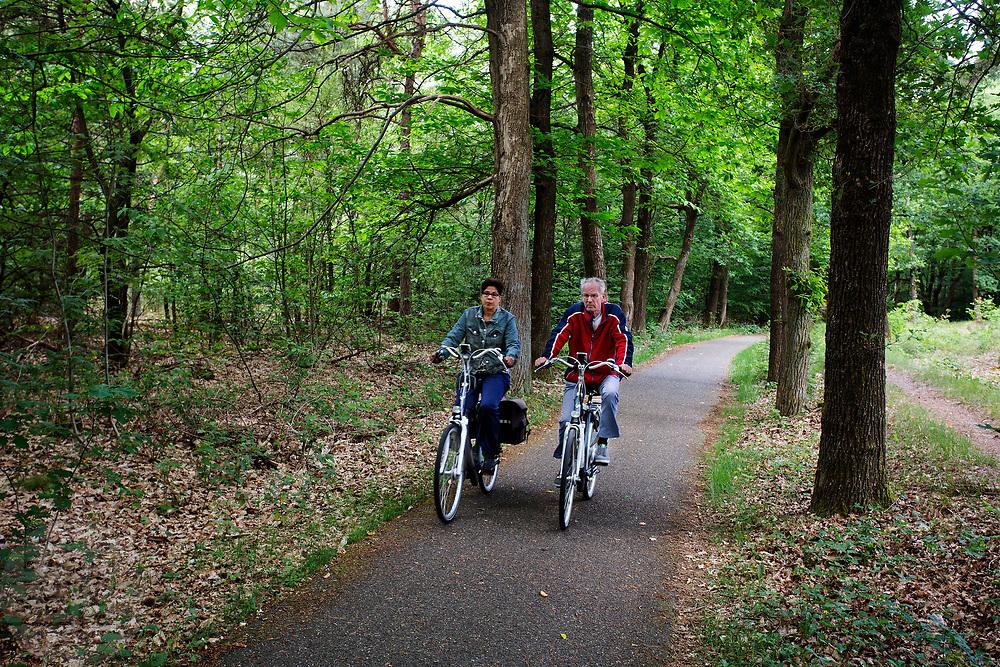 In Uden rijden fietsers op een een mooie Pinksterdag door het bos.<br /> <br /> In Uden cyclists ride at the woods.