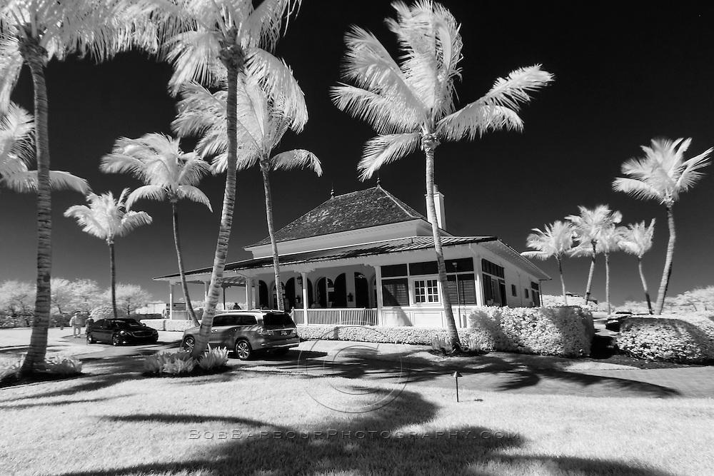 Infrared photo of Marsh Island, Florida
