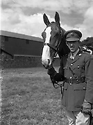 25/07/1952 <br />