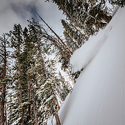 Jess McMillan skis the backcountry powder near Jackson Hole Mountain Resort in Teton Village, Wyoming.