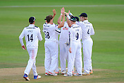 Brad Wheal of Hampshire celebrates taking the wicket of Alex Lees of Yorkshire during the Specsavers County Champ Div 1 match between Hampshire County Cricket Club and Yorkshire County Cricket Club at the Ageas Bowl, Southampton, United Kingdom on 1 September 2016. Photo by Graham Hunt.