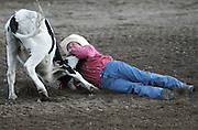 061408-Evergreen, CO-steerwrestling-A steer calf wrestles loose from the grip of Chad Van Campen during the steer wrestling competition Saturday, June 14, 2008 at the Evergreen Rodeo Grounds..Photo By Matthew Jonas/Evergreen Newspapers/Photo Editor