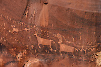 Petroglyphs of the Procession Panel; Comb Ridge, Cedar Mesa, UT
