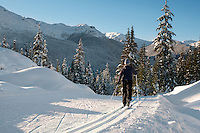 Cross country skier Deanna White enjoys the cross country trails at Callaghan Valley, near Whistler, BC Canada