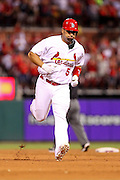 29 June 2010: St. Louis Cardinals first baseman Albert Pujols (5) trots after he hit a home run against the Arizona Diamondbacks during the fifth inning  at Busch Stadium in St. Louis, Missouri.