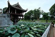 Chua Mot Kot (One Pillar Pagoda).