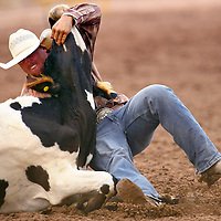 070413  Adron Gardner/Independent<br /> <br /> Michael Bates Jr. wrestles a steer during the PRCA 4th of July Rodeo at the Navajo Nation Fairgrounds in Window Rock Thursday.