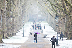 © Licensed to London News Pictures. 26/02/2018. London, UK. A woman shelters from the snow underneath an umbrella in Green Park. Severe cold, blizzards and heavy snow are expected as the 'Beast from the East' brings freezing Siberian air to the UK. Photo credit: Rob Pinney/LNP