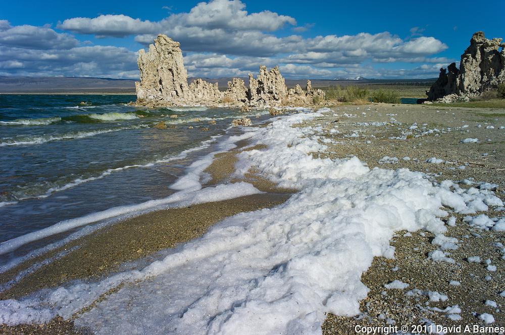 Foam blown by wind on beach, tufa formations in Mono Lake, California, USA