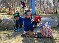 Twins Devante and Josiah work as a team to fill their basket with Easter eggs during the Weirs Beach Community Center's Easter egg hunt on Saturday morning.  (Karen Bobotas/for the Laconia Daily Sun)