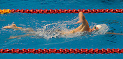 Dylan Dunlop-Barrett of the Harlequins team competes in the 16+ Men's 1500m Freestyle race during the Senior Zonal Championship at the Wellington Regional Aquatic Centre in Kilbirnie in Wellington on Friday the 4th of October 2013. Photo by Marty Melville/www.photosport.co.nz