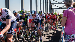 Peloton with GREIPEL André from Germany of Lotto Soudal (BEL) at the 2nd lap (1000M) from the finish line on the John Frost Bridge 'A Bridge Too Far', stage 3 from Nijmegen to Arnhem running 190 km of the 99th Giro d'Italia (UCI WorldTour), The Netherlands, 8 May 2016. Photo by Pim Nijland / PelotonPhotos.com | All photos usage must carry mandatory copyright credit (Peloton Photos | Pim Nijland)