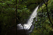 The Lower McLean Falls on the Tautuku River in Catlin Conservation Park, Otago, New Zealand.