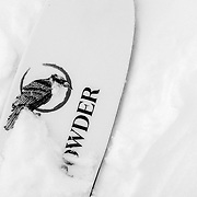 The Powder logo sticker on a ski topsheet.