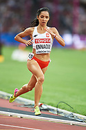 Great Britain, London - 2017 August 04: Sofia Ennaoui (MKL Szczecin) of Poland competes in women's 1500m qualification during IAAF World Championships London 2017 at  London Stadium on August 04, 2017 in London, Great Britain.<br /> <br /> Mandatory credit:<br /> Photo by © Adam Nurkiewicz<br /> <br /> Adam Nurkiewicz declares that he has no rights to the image of people at the photographs of his authorship.<br /> <br /> Picture also available in RAW (NEF) or TIFF format on special request.<br /> <br /> Any editorial, commercial or promotional use requires written permission from the author of image.