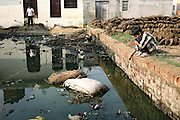 A boy living in Jaibheem Nagar, pop. 10000, a large slum located near the banks of the Kali river (East), Meerut District, Uttar Pradesh, India, is playing near one of the contaminated water pools that regularly forms in the slum, on Sunday, Mar. 16, 2008. Due to the heavy metal presence within underground water sources, many of the residents are forced to walk 2-3 kilometres to reach a safer hand-pump, and those who are unable to do so, have to drink the polluted water which is the cause of many of the diseases affecting the local population.