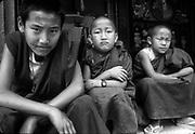Nepal. Monks have me under scrutiny.<br />Kathmandu Valley.
