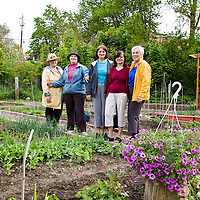Bosnian Seniors New Horizons Community Garden