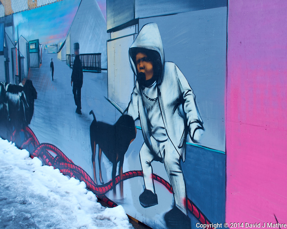 Street art on a rainy day walkabout in Reykjavik. Image taken with a Leica X2 camera (ISO 100, 24 mm, f/3.5, 1/60 sec).