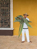 An employee carries cut agava leaves at the tequila distillery Mayapan in Valladolid, Mexico.