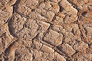 Dry earth in the Sahara desert, Morocco.