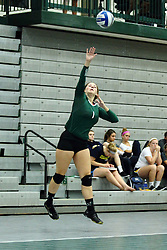 22 September 2015:  Leah Seielstad(1) during an NCAA womens division 3 Volleyball match between the Augustana Vikings and the Illinois Wesleyan Titans in Shirk Center, Bloomington IL