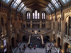 UK ENGLAND LONDON APR11 - View of Central Hall at the Natural History Museum in Kensington, London. The museum is home to life and earth science specimens comprising some 70 million items within five main collections: Botany, Entomology, Mineralogy, Palaeontology and Zoology...jre/Photo by Jiri Rezac..© Jiri Rezac 2011