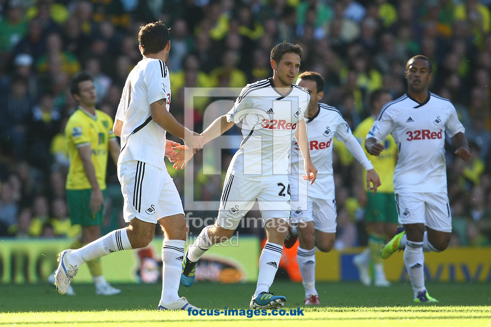 Picture by Paul Chesterton/Focus Images Ltd.  07904 640267.15/10/11.Danny Graham of Swansea scores his sides 1st goal and celebrates during the Barclays Premier League match at Carrow Road stadium, Norwich.