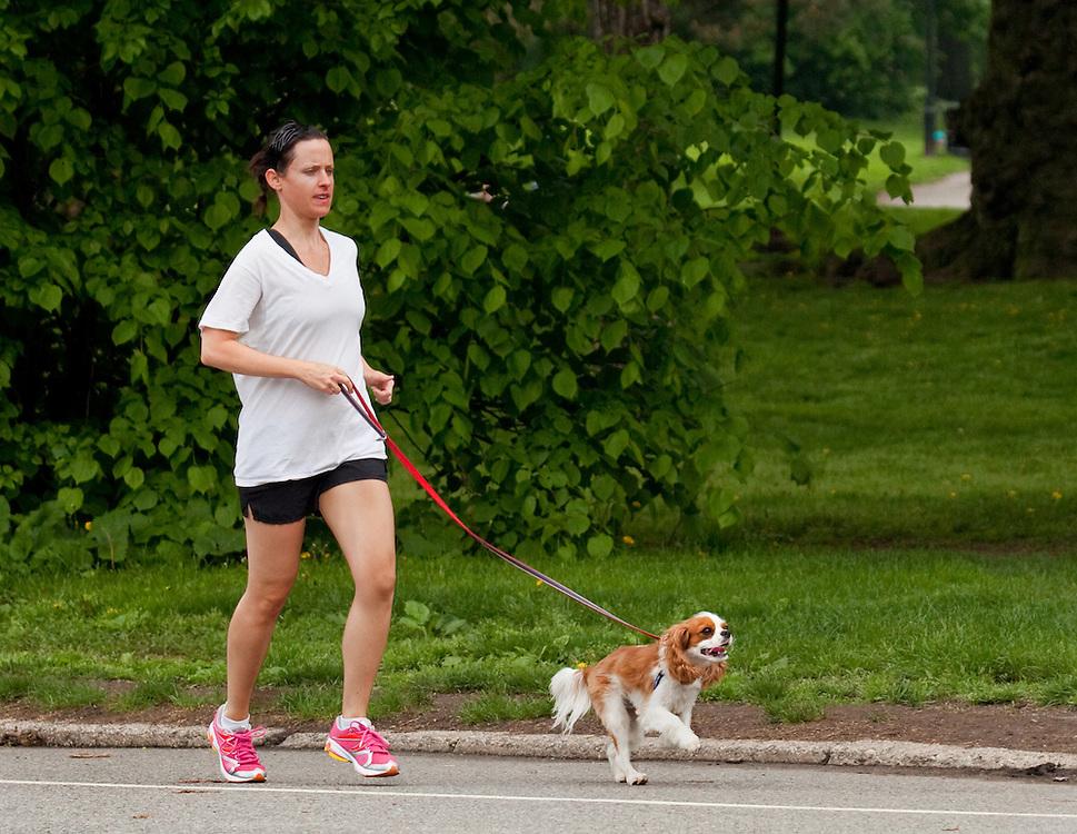 Jogging the dog.