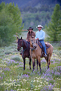 Young American Western couple riding horses through a wildflower meadow in Montana.