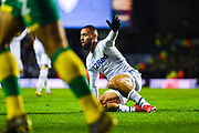 Kemar Roofe of Leeds United (7) looks to the assistant to appeal for a penalty during the EFL Sky Bet Championship match between Leeds United and Norwich City at Elland Road, Leeds, England on 2 February 2019.