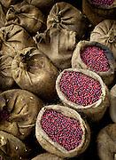 Finca Malacara.Coffee Farm.El Salvador