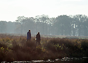© Licensed to London News Pictures. 29/11/2014. Richmond, UK. A couple take a stroll along the ponds.  People and animals enjoy the late Autumn sunshine in Richmond Park, Surrey, today 29th November 2014. Photo credit : Stephen Simpson/LNP