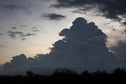 Cumulus Castellanus clouds darken the evening sky in Yala National Park (also known as Ruhunu National Park) in the Hambantota District of Sri Lanka.