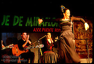 Woman dances flamenco as her colleagues clap and strum rhythms; Festival de los Patios, Cordoba. Spain