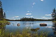 A small unnamed lake of Craig Lake State Park in Michigan's Upper Peninsula.