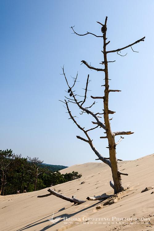 France, La Teste-de-Buch, Arcachon Bay. Dune du Pilat, the tallest sand dune in Europe.