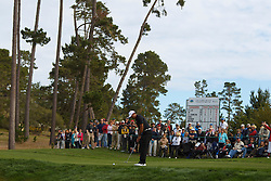 Feb 10, 2012; Pebble Beach CA, USA;  Tiger Woods putts on the fourth hole during the second round of the AT&T Pebble Beach Pro-Am at Monterey Peninsula Country Club. Mandatory Credit: Jason O. Watson-US PRESSWIRE