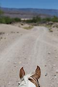 Horse ride into Boquillas del Carmen.